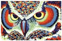 """Bright Eyes by Carolee Vitaletti - 37"""" x 25"""""""