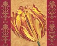 Tulip Power I Fine Art Print