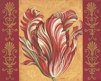 Tulip Power III Fine Art Print