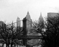 Bridges of NYC V Fine Art Print