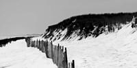 Shore Panorama I Fine Art Print