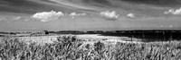 Shore Panorama III Framed Print