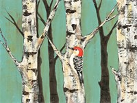 Birch Grove on Teal II by Jade Reynolds - various sizes