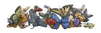 Wings of Splendor I by Wendy Russell - various sizes