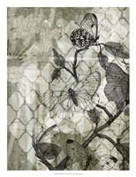 Arabesque Butterflies II Framed Print