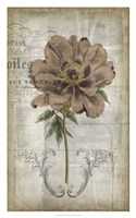 "French Floral II by Jennifer Goldberger - 20"" x 32"" - $43.99"