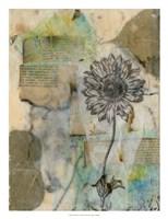 "Vellum Floral I by Jennifer Goldberger - 20"" x 26"" - $34.49"