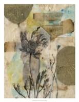 "Vellum Floral II by Jennifer Goldberger - 20"" x 26"" - $34.49"