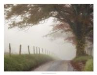 "Blanket of Fog by Danny Head - 26"" x 20"""