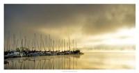 Marina Morning II Framed Print