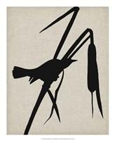 "Audubon Silhouette II by Vision Studio - 18"" x 22"""