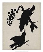 "Audubon Silhouette III by Vision Studio - 18"" x 22"""
