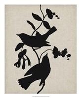 Audubon Silhouette IV Fine Art Print