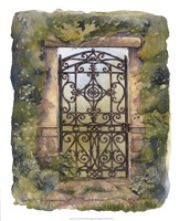 Iron Gate III Fine Art Print