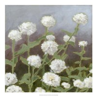 "Botanical Garden Study I by Megan Meagher - 20"" x 20"""
