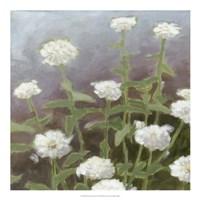 "Botanical Garden Study II by Megan Meagher - 20"" x 20"""