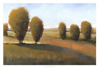 "Afternoon Light I by Timothy O'Toole - 32"" x 22"""