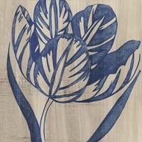 Indigo Tulip by Chariklia Zarris - various sizes