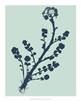 "Indigo & Mint Botanical Study II by Vision Studio - 16"" x 20"""
