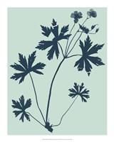 Indigo & Mint Botanical Study III Fine Art Print