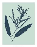 "Indigo & Mint Botanical Study IV by Vision Studio - 16"" x 20"""