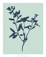 "Indigo & Mint Botanical Study VII by Vision Studio - 16"" x 20"""