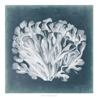 """Azure Coral III by Vision Studio - 20"""" x 20"""""""