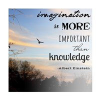 Imagination is More Important Than Knowledge - Albert Einstein Fine Art Print