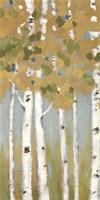 "Golden Day I by Rita Vindedzis - 12"" x 24"""
