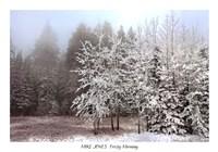 "Frosty Morning by Mike Jones - 40"" x 28"""