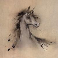 Horse Play I Framed Print