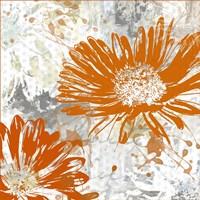 Upsy Daisy I Fine Art Print
