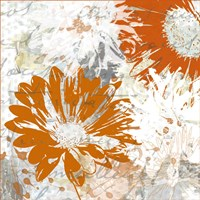 Upsy Daisy II Fine Art Print