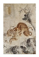 Family of Tigers Fine Art Print