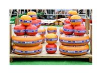 Dutch Cheese Market - various sizes