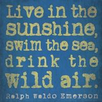 Live in Sunshine