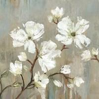 Sweetbay Magnolia I Fine Art Print