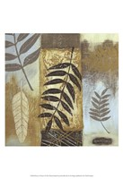 Patterns of Nature I Fine Art Print