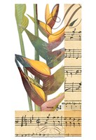 "Emeraude Opera II by W Green-Aldridge - 13"" x 19"", FulcrumGallery.com brand"