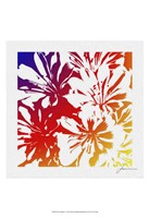 Floral Brights I Fine Art Print