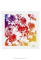 """Floral Brights III by James Burghardt - 13"""" x 19"""""""