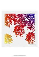 "Floral Brights IV by James Burghardt - 13"" x 19"""