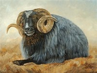 Baa Baa Black Sheep by Kathy Winkler - various sizes