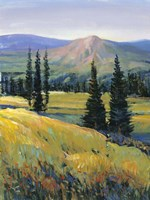 Purple Mountain Majesty II by Timothy O'Toole - various sizes
