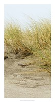 """Dunes III by Rachel Perry - 14"""" x 26"""""""