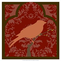 Moroccan Songbird I Fine Art Print
