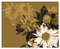 Golden Bloom II Fine Art Print