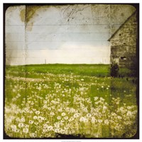 """Field II by Ingrid Blixt - 26"""" x 26"""""""