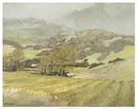 "Spring Vineyard by Silvia Rutledge - 30"" x 24"""