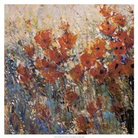 Red Poppy Field I by Timothy O'Toole - various sizes - $27.99
